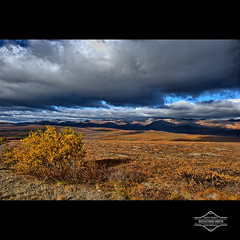 The Arctic Circle (kdee64) Tags: september autumncolours yukon tundra arcticcircle dempsterhighway richardsonmountains northernyukon