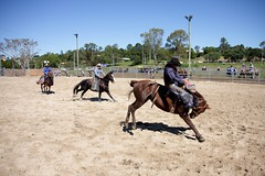 IMG_6114 (Natashatashtash) Tags: rodeo brisbanemeetup daybororodeo2011