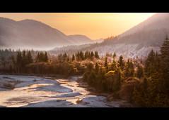 """rich"" (Lednyi) Tags: river bayern bavaria nebel natur berge fluss isar wald sonnenaufgang baum morgens naturschutzgebiet kiesbank plpisar"