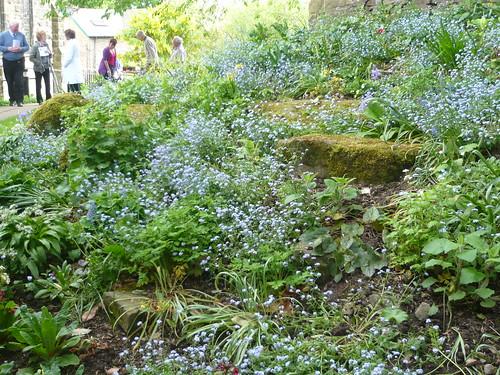 Menston Church Garden 028