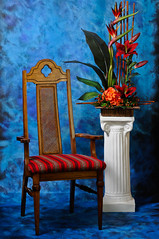 The Portraiture Chair