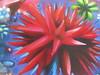 Blumen Auftragsbild auf Metall lackiert.