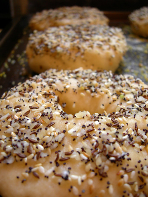 Everything Bagels Before Baking