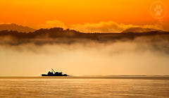 Macquarie Harbour (The Eternity Photography) Tags: morning winter orange cloud mist mountain sunshine silhouette misty fog clouds canon boat harbour au foggy australia tasmania colourful morningmist 70200mm santanu 2011 macquarieharbour 60d banik santanubanik canonef70200mmf28isusmlens canoneos60d        wwwfrozenforeternitycom wwwmomentsofnaturecom tasmaniainjune2011 worldheritagewildernessarea