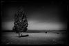 Darkness Falls on Pumice Flats, Mono Mills CA (After Dark Photo) Tags: longexposure blackandwhite night stars desert fullmoon monolake nocturne startrails monomills zeiss21mm pumiceflats