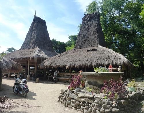 Sumba ouest-Praigoli-Village (16)
