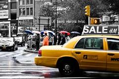 Ellas, ellos y los amarillos de NY (Laura Marcela Castiblanco) Tags: ny newyork lluvia taxi paraguas lauramarcelaarias