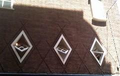 Windows (Arenamontanus) Tags: brick window amsterdam expressionism parallelogram