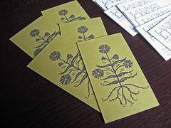 Lauren Liess Interiors Business Cards