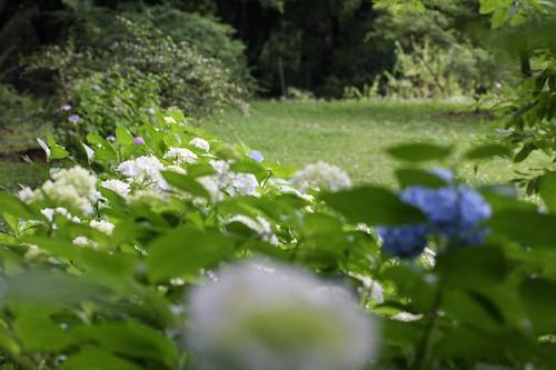 見渡す景色 / Good scenery