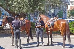 Mounted Police - Valencia Spain (Sony HX60V) (markdbaynham) Tags: street city travel people urban horse valencia spain zoom candid sony police cybershot espana espanol mounted metropolis hx dsc cyber compact 60v sonyphotographing travelzoom hx60 hx60v