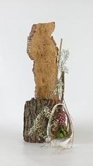Fou (Julien Richa) Tags: flower fleur julien richa ikebana milena morimono depelsenaire