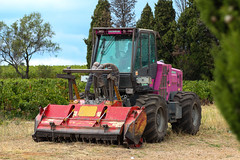 TREEMME. (HivizPhotography) Tags: treemme mm 350 b merlo mm350b france flail mower vines vinyard purple tractor clearing cutting woodland