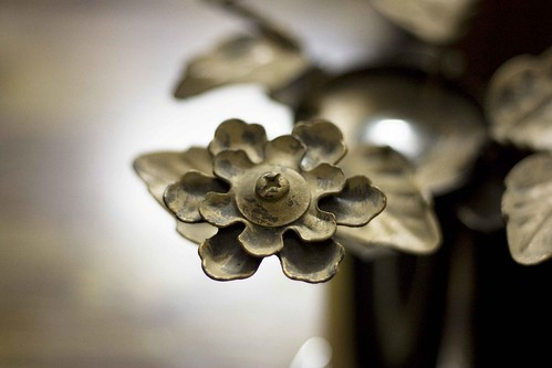 Metal Flowers by amulya