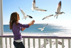 Feed the Birds (Kathrynannearmstrong) Tags: ocean road travel pink blue school girls light sunset shadow sea summer portrait sun sunlight white mountains hot love beach water colors girl beautiful smile wall shirt sarah lady train work hair happy person anne photo spring cool stem eyes sand nikon soft pretty looking katy dress princess florida random sister know air awesome think over shell rocky wave shy sparkle porch stunning second vase valentines viva picnik yep vivir souring
