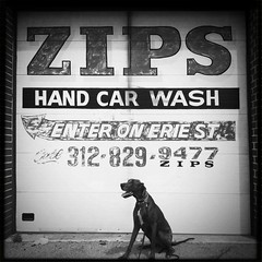 Zips (k.james) Tags: chicago car typography wash lettering zips handjob westtown signpainting