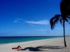 """Under the Sun"". Hollywood. FL (alejandra.rh) Tags: vacation beach relax us sand alone peace florida playa palm arena shore hollywood palma vacaciones orilla bestofblinkwinners"