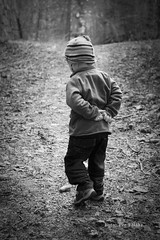 Walk in the woods (pflaathe) Tags: norway tur telemark mormor bestefar skogen stier pererik gr langesund tangenfort