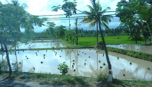Lombok-Mataram (20)