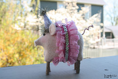 CircusLife: pig [1] (craft:nosis) Tags: party animal stuffed pattern handmade circus sew felt stuffies woolfelt
