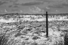 La plage de la Jenny (jeudombre) Tags: ocean bw france beach canon eos kid child nb le enfant printemps porge aquitaine gironde lajenny leporge 60d leporgeocean leporgelajenny