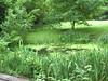 The Pond (Davydutchy) Tags: gardens hotel nice may charm wassenaar hospitality 2014 buitengoed hagenhorst