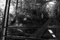 DSC02424 (Nakagawa Takuma) Tags: bw monochrome japan photography tokyo blackwhite  sonyrx1 sonydscrx1r takumanakagawa