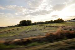 Scusate, vado di fretta () Tags: auto blur car speed landscape photography photo blurry foto photographer photos running fotografia paesaggio stefano velocit fotografo corsa mossa mosso trucco zush stefanotrucco