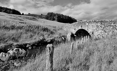 Bridge over highland stream (dreamincontrast) Tags: dream contrast dreamincontrast dreamincontrastportfolio scotland uk aberdeenshire scenic rural landscape countryside c mono black white stream bridge fence hill hills walk public footpath wooden posts trees forrest peaceful