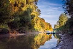 Donau-Au (mario.san.) Tags: spiegelung fluss donau boot reflection bume baum austria sterreich au herbst sony a7