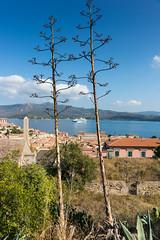 Isola d'Elba (Peter Lendvai) Tags: toscana tuscany italy 2016 travel peterlendvai phototrip isoladelba portoferraio