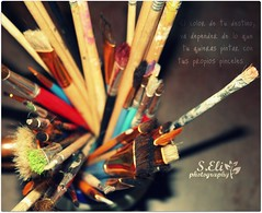 My own paintbrushes (lizbeth ) Tags: macro closeup cores photography paint eli dof colores depthoffield sanjuan brushes paintbrushes pinceles lvm colourscolors lavueltaalmundo seliphotography letouraumonde myownpaintbrushes pintartucolor siempreencontrarscoloresparapintartumundo