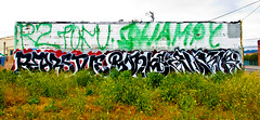 Pear, Stue, Bonks, Augor (TheHarshTruthOfTheCameraEye) Tags: fun graffiti oakland kid big al tofu large it trouble illegal otr pear msk r2 nsf stue swampy bkf bonks augor n4n