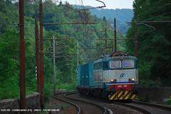 Nella valle dell'Arno (trenirfp) Tags: cargo chemical carmignano e655 e655199