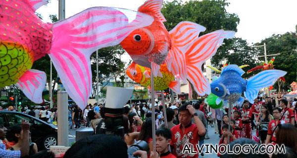 Colourful goldfish