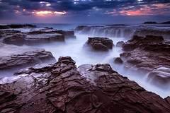 Risking It (stevoarnold) Tags: blue seascape flower water sunrise rocks australia nsw southcoast kiama