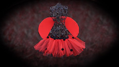 Lady bug tutu (howtomaketutus) Tags: make how tutu tutus tutuskirt tutucostume ladybugtutu