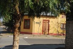 Rosario (A)13 (Bosquesensilencio) Tags: chile rosario 2014 regiondeohiggins