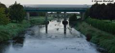 ICR passes Monasterevin, 22/9/16 (hurricanemk1c) Tags: railways railway train trains irish rail irishrail iarnród éireann iarnródéireann 2016 22000 rotem icr rok 4pce 0530galwayheuston monasterevin