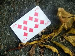 Lucky Card (Quetzalcoatl002) Tags: playingcard pavement autumn autumnleafs street closeup 10 cards
