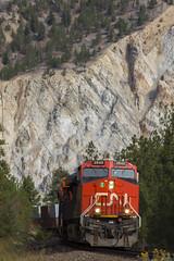 CN 102 at Kumsheen (Christian Vazzaz) Tags: kumsheen explorebc explorecanada amazing trains foamer worldwide railman bc bcrail cn cnr cnrail