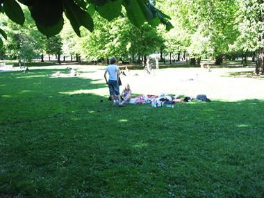 världens bästa picknick!