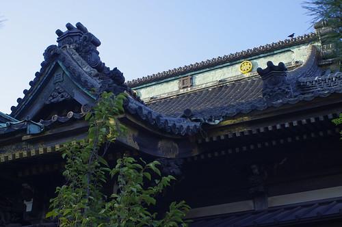 妙行寺 Myokoji
