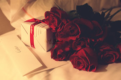 (- M7D . S h R a T y) Tags: red roses flower color rose cartier card gift romantic wordsbyme allrightsreserved