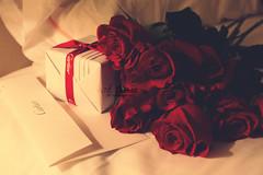 يــا جعـلـنــا طـول الـعـمــر طـيـبـيــن (- M7D . S h R a T y) Tags: red roses flower color rose cartier card gift romantic wordsbyme allrightsreserved™