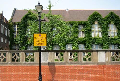 Neighborhood School by Danalynn C
