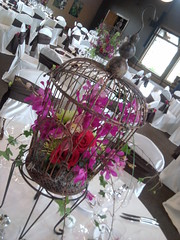 Bird Cage Centerpiece (Celadon Events) Tags: wedding decorations events weddings decor centerpieces customwork ceilingtreatment