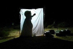 Day 5 - Photo 19: Light sheet trapping at Pulchera Waterhole