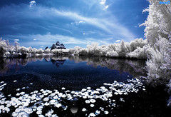 Winter Expedition To Disney's Everest (Infrared Image) (Tom.Bricker) Tags: nikon nikond70 disney infrared infraredphotography infraredphotos disneyphotos nikond70infrared disneyinfrared