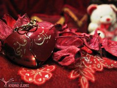 you have my heart (MoHammaD Al-jameel) Tags:
